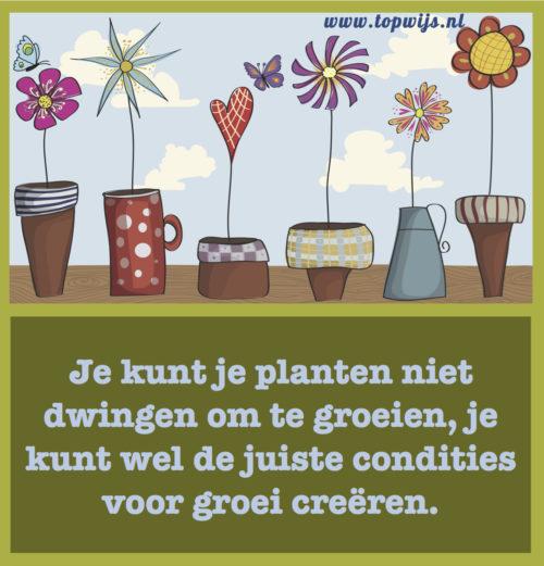 Je kunt je planten niet dwingen om te groeien