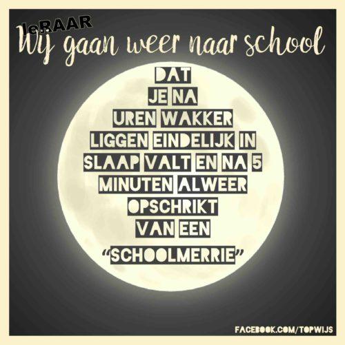 """De """"schoolmerrie"""": De nacht voor de eerste schooldag"""