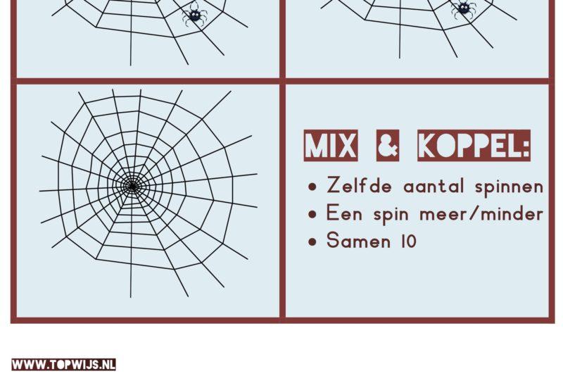 Mix en Koppel Rekenen met spinnen: Coöperatief leren voor kleuters en groep 3