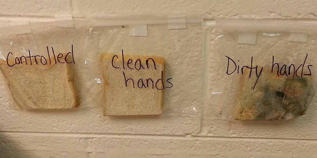 Experiment met boterhammen: Handen wassen!