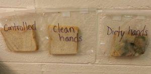 Experiment met boterhammen: Het belang van handen wassen.
