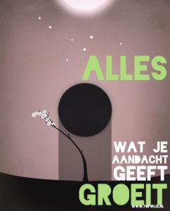 Alles wat je aandacht geeft groeit: gratis poster